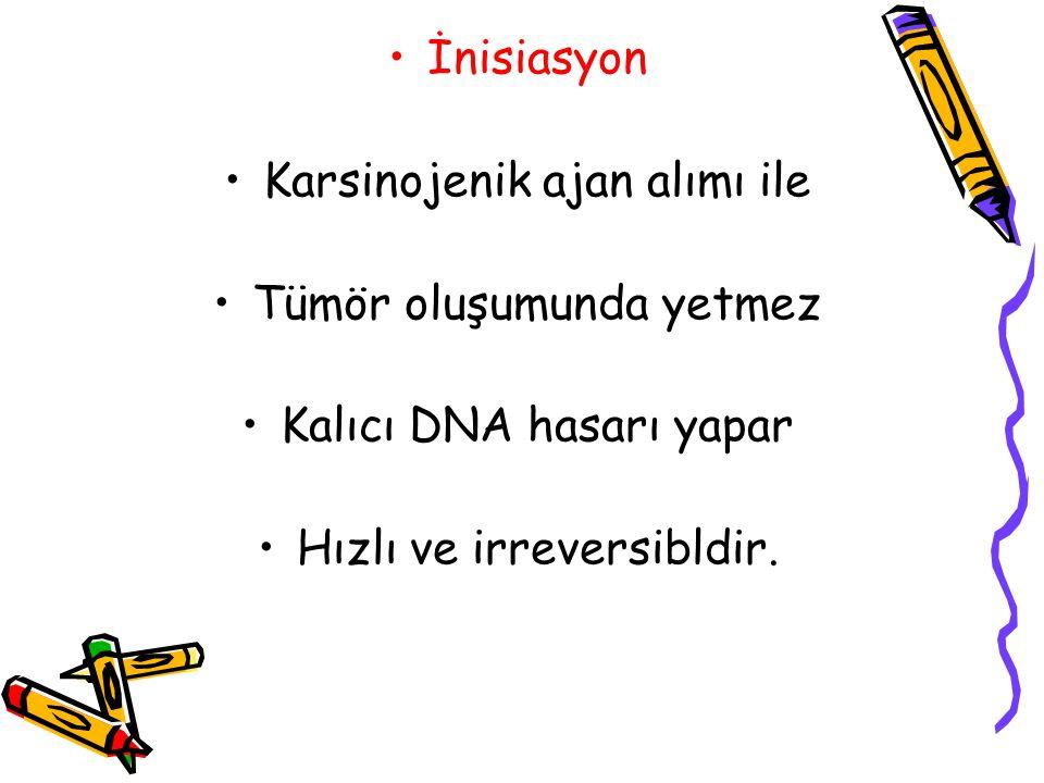 İnisiasyon Karsinojenik ajan alımı ile Tümör oluşumunda yetmez Kalıcı DNA hasarı yapar Hızlı ve irreversibldir.
