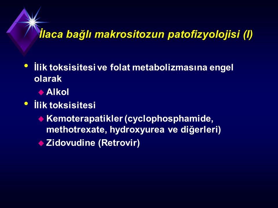 İlaca bağlı makrositozun patofizyolojisi (I) İlik toksisitesi ve folat metabolizmasına engel olarak u Alkol İlik toksisitesi u Kemoterapatikler (cyclo