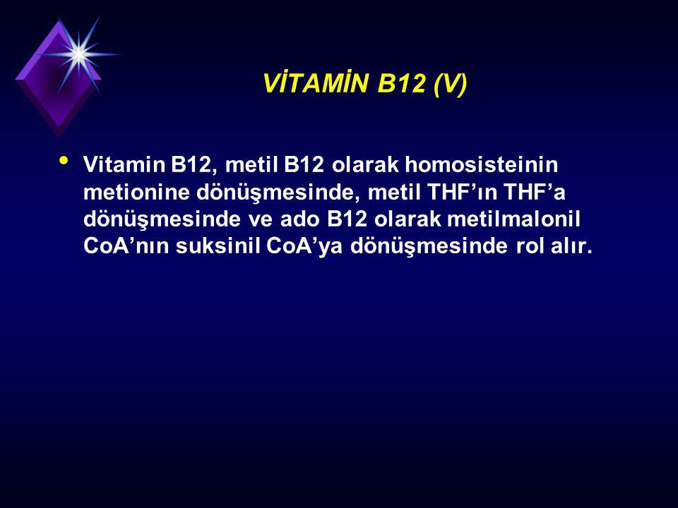 VİTAMİN B12 (V) Vitamin B12, metil B12 olarak homosisteinin metionine dönüşmesinde, metil THF'ın THF'a dönüşmesinde ve ado B12 olarak metilmalonil CoA