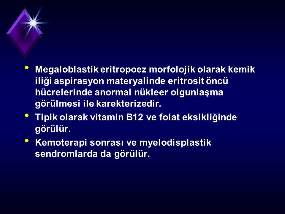 Megaloblastik eritropoez morfolojik olarak kemik iliği aspirasyon materyalinde eritrosit öncü hücrelerinde anormal nükleer olgunlaşma görülmesi ile ka