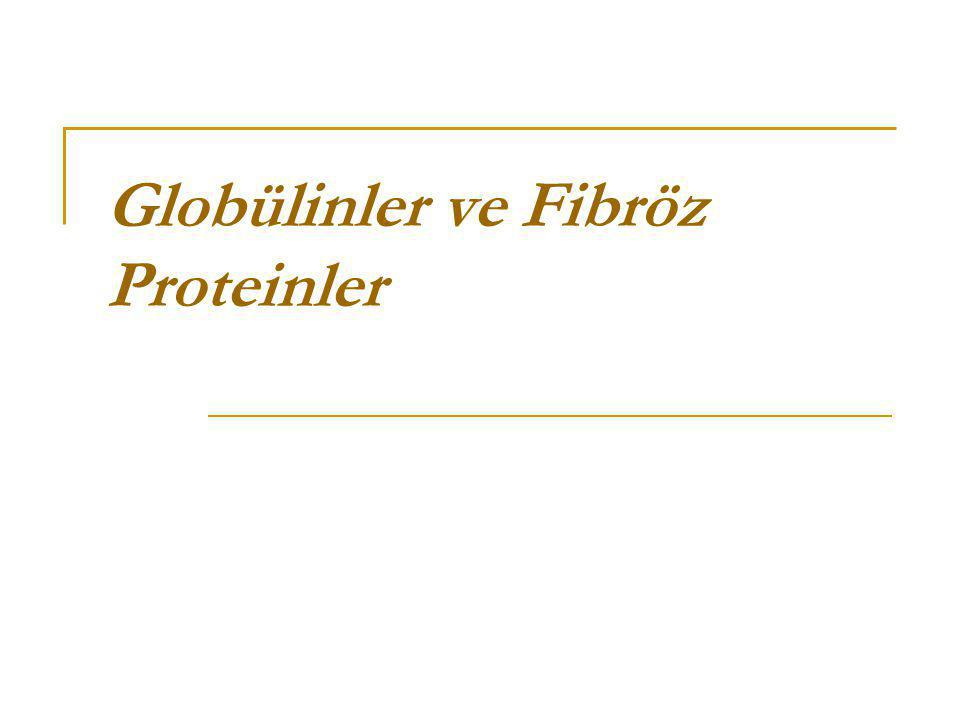 Globülinler ve Fibröz Proteinler