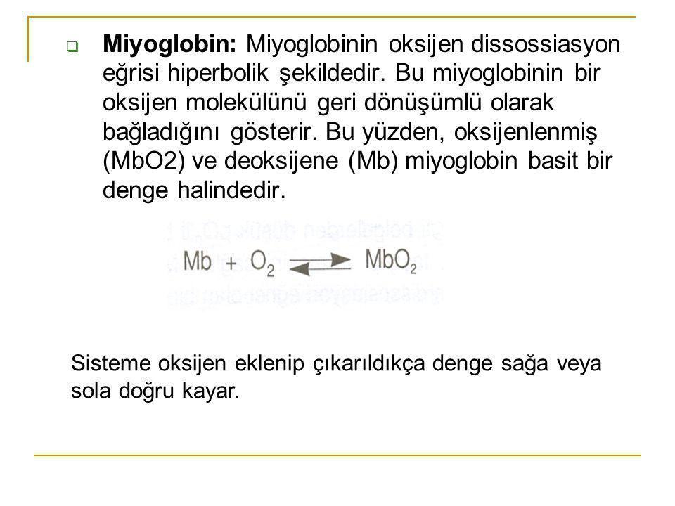  Miyoglobin: Miyoglobinin oksijen dissossiasyon eğrisi hiperbolik şekildedir. Bu miyoglobinin bir oksijen molekülünü geri dönüşümlü olarak bağladığın