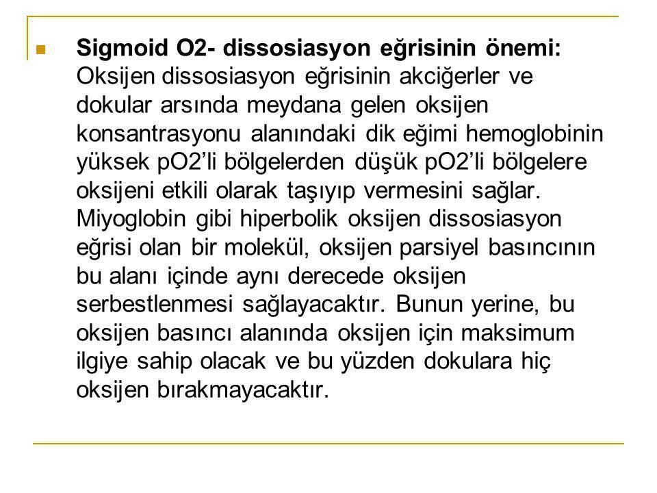 Sigmoid O2- dissosiasyon eğrisinin önemi: Oksijen dissosiasyon eğrisinin akciğerler ve dokular arsında meydana gelen oksijen konsantrasyonu alanındaki