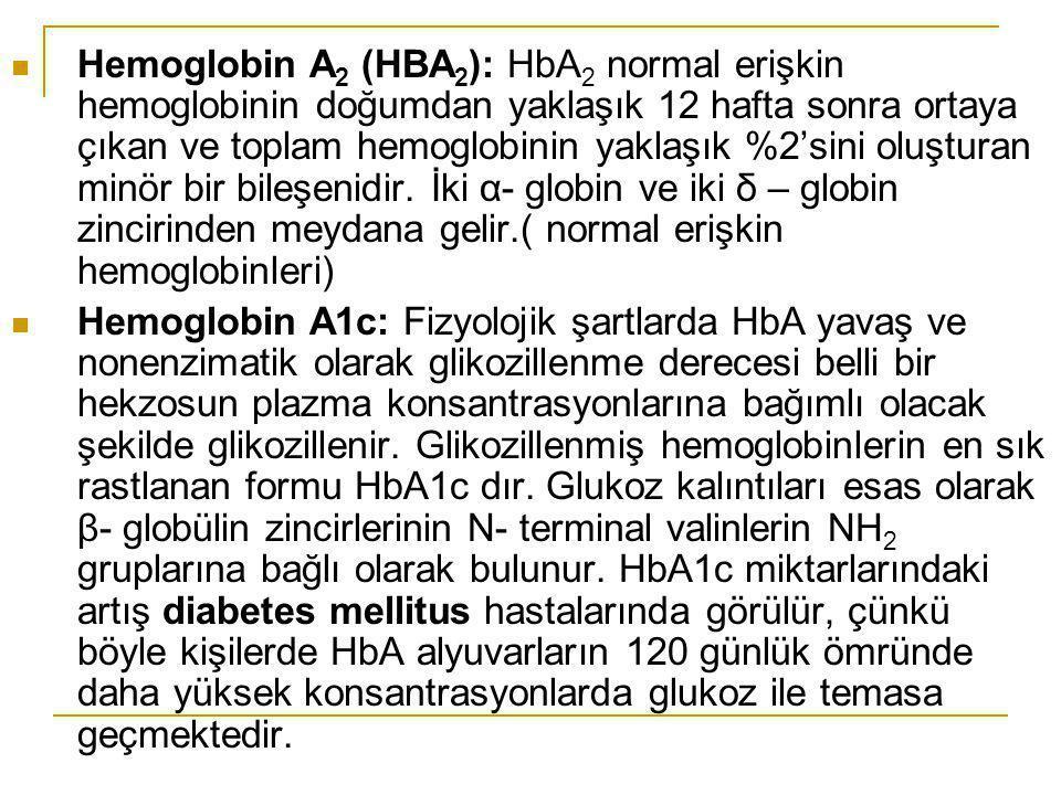 Hemoglobin A 2 (HBA 2 ): HbA 2 normal erişkin hemoglobinin doğumdan yaklaşık 12 hafta sonra ortaya çıkan ve toplam hemoglobinin yaklaşık %2'sini oluşt