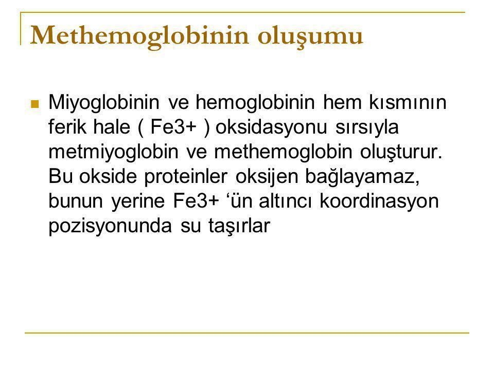 Methemoglobinin oluşumu Miyoglobinin ve hemoglobinin hem kısmının ferik hale ( Fe3+ ) oksidasyonu sırsıyla metmiyoglobin ve methemoglobin oluşturur. B