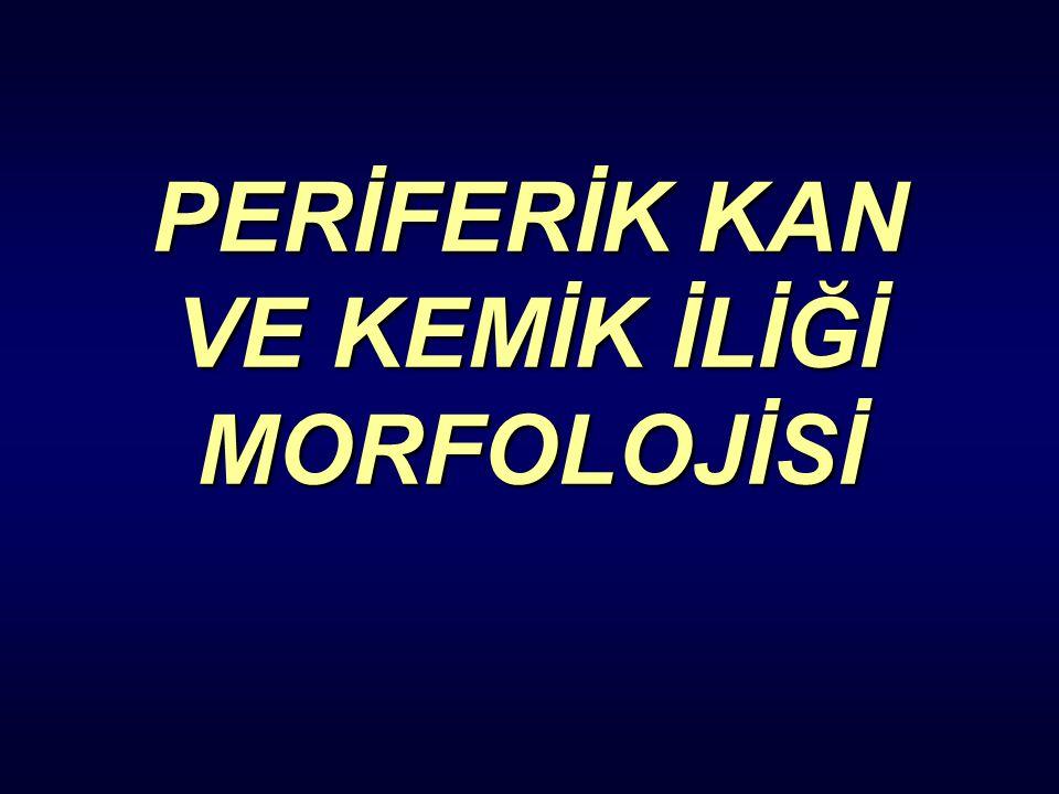 PERİFERİK KAN VE KEMİK İLİĞİ MORFOLOJİSİ