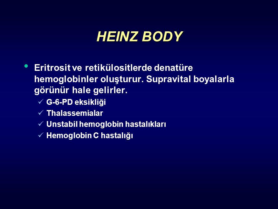 HEINZ BODY Eritrosit ve retikülositlerde denatüre hemoglobinler oluşturur. Supravital boyalarla görünür hale gelirler. G-6-PD eksikliği Thalassemialar