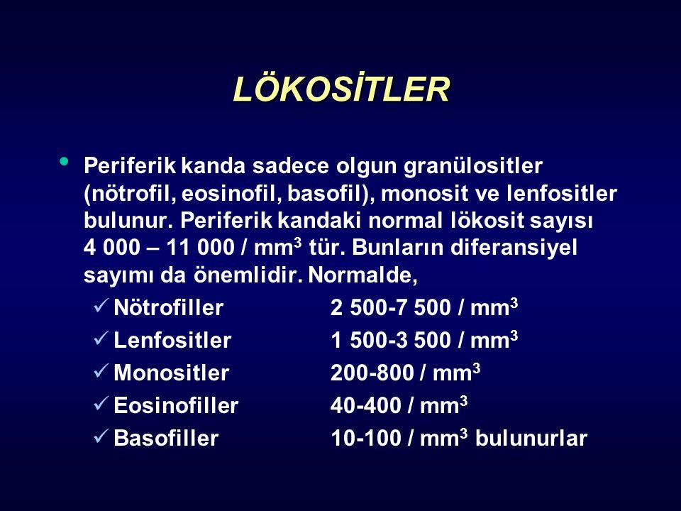 LÖKOSİTLER Periferik kanda sadece olgun granülositler (nötrofil, eosinofil, basofil), monosit ve lenfositler bulunur. Periferik kandaki normal lökosit