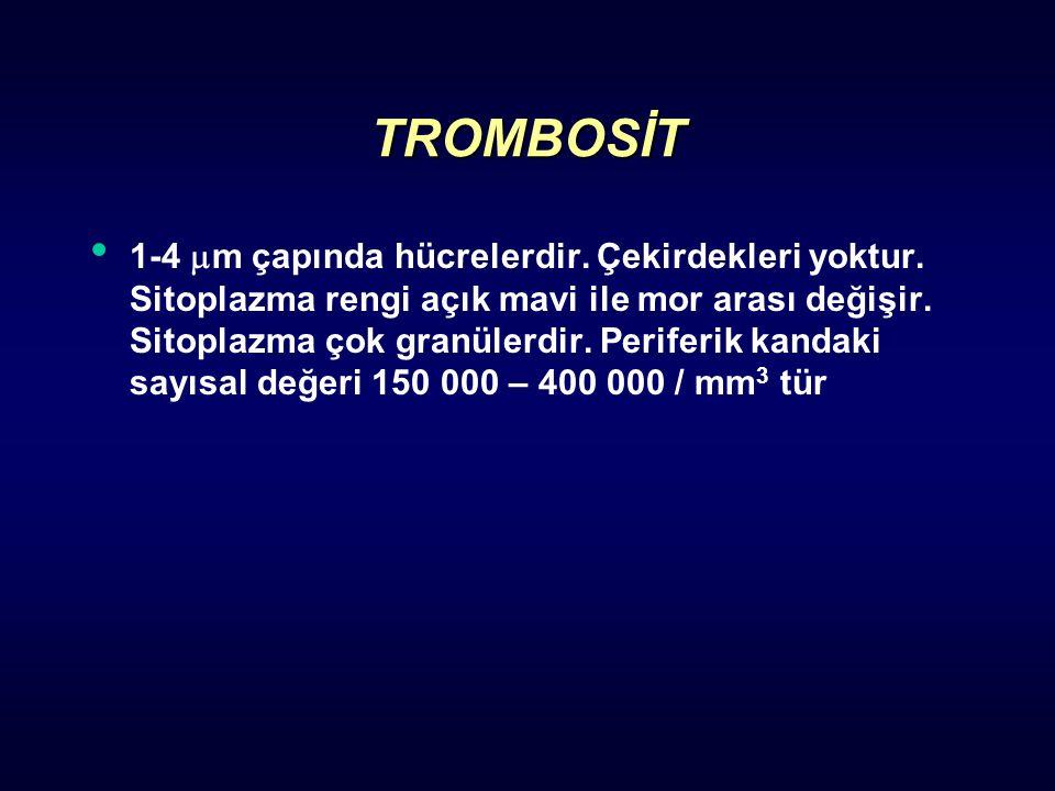 TROMBOSİT 1-4  m çapında hücrelerdir. Çekirdekleri yoktur. Sitoplazma rengi açık mavi ile mor arası değişir. Sitoplazma çok granülerdir. Periferik ka