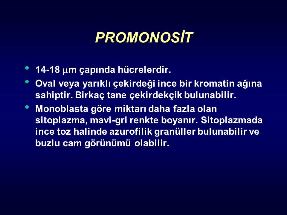PROMONOSİT 14-18  m çapında hücrelerdir. Oval veya yarıklı çekirdeği ince bir kromatin ağına sahiptir. Birkaç tane çekirdekçik bulunabilir. Monoblast