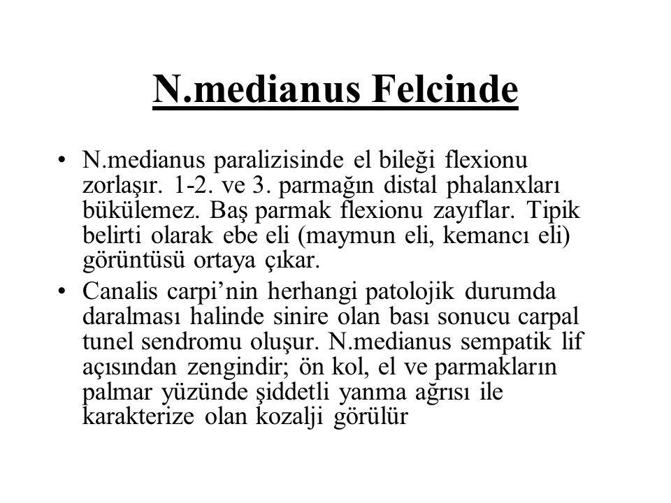 N.medianus Felcinde N.medianus paralizisinde el bileği flexionu zorlaşır. 1-2. ve 3. parmağın distal phalanxları bükülemez. Baş parmak flexionu zayıfl