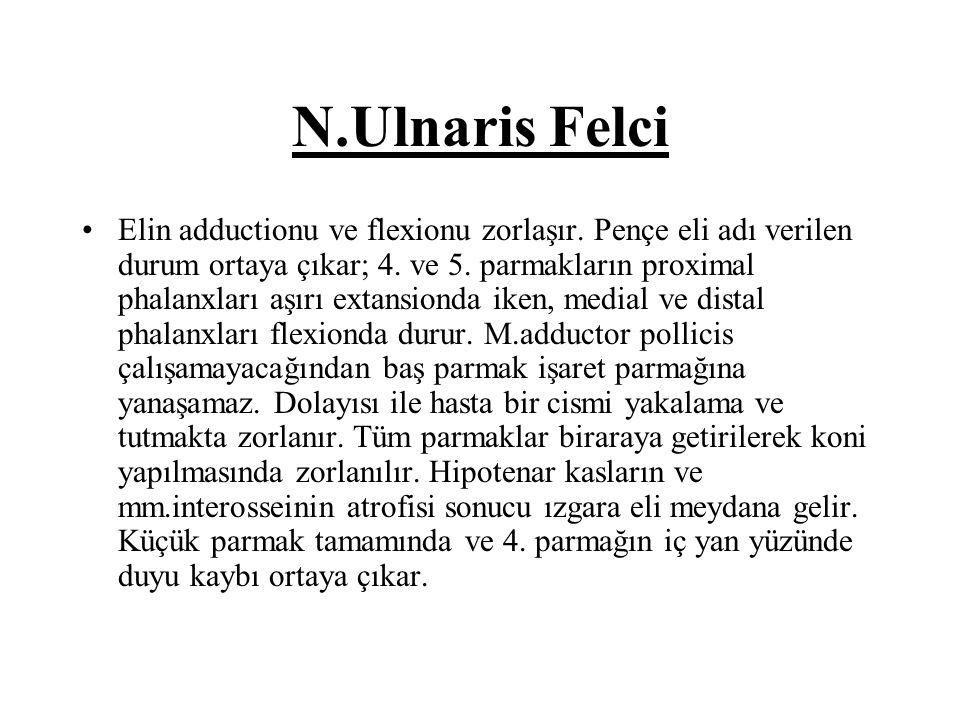 N.Ulnaris Felci Elin adductionu ve flexionu zorlaşır.