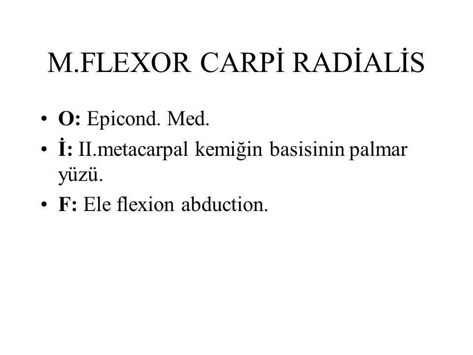 M.FLEXOR CARPİ RADİALİS O: Epicond. Med. İ: II.metacarpal kemiğin basisinin palmar yüzü. F: Ele flexion abduction.