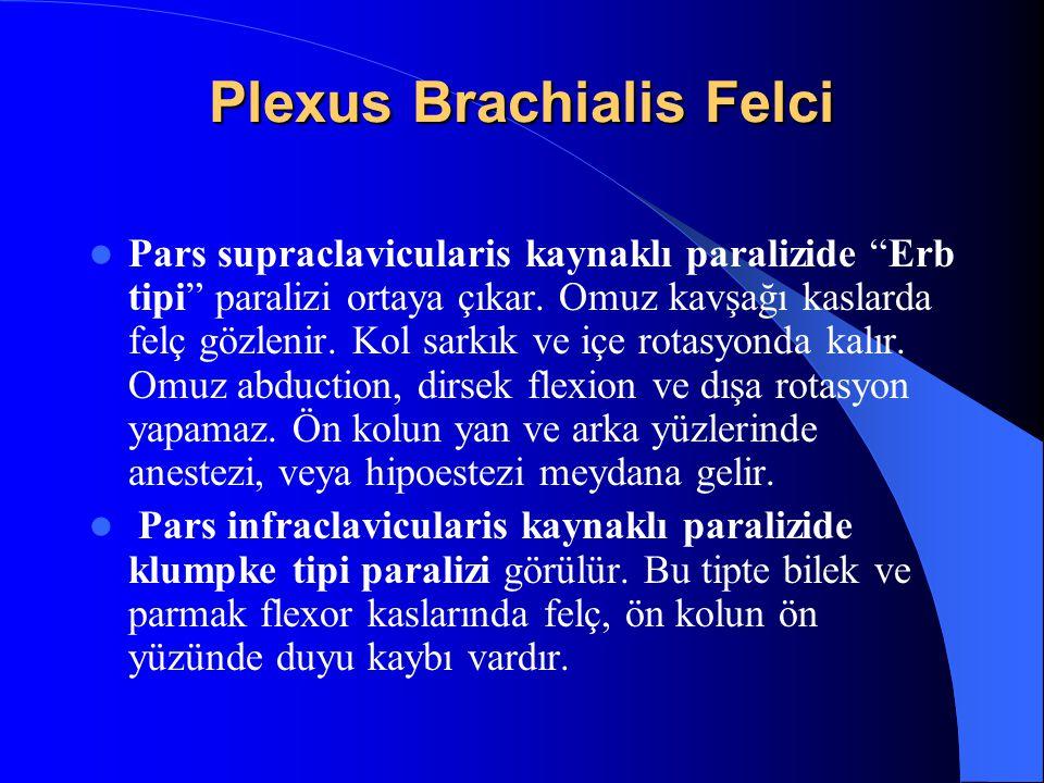 Plexus Brachialis Felci Pars supraclavicularis kaynaklı paralizide Erb tipi paralizi ortaya çıkar.