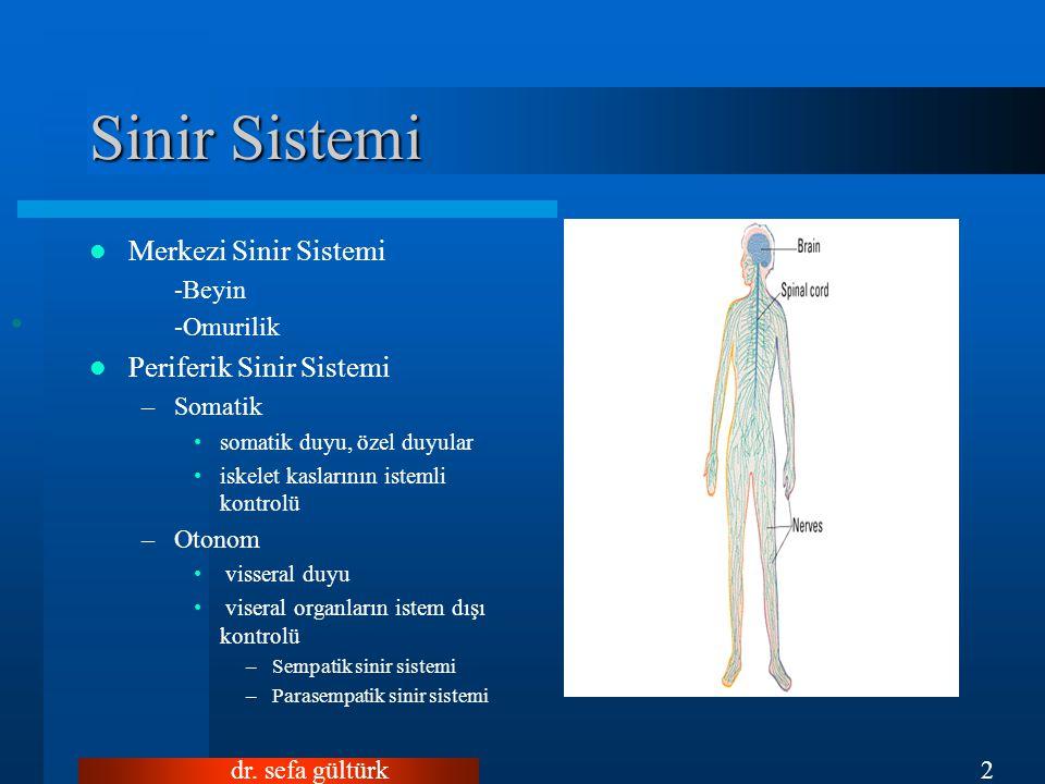 dr. sefa gültürk2 Sinir Sistemi Merkezi Sinir Sistemi -Beyin -Omurilik Periferik Sinir Sistemi –Somatik somatik duyu, özel duyular iskelet kaslarının