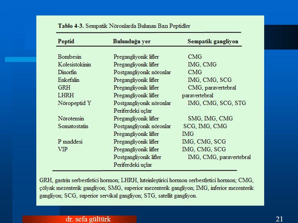 dr. sefa gültürk21