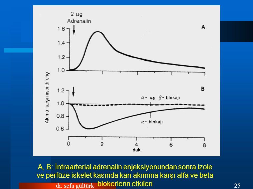 dr. sefa gültürk25 A, B: İntraarterial adrenalin enjeksiyonundan sonra izole ve perfüze iskelet kasında kan akımına karşı alfa ve beta blokerlerin etk