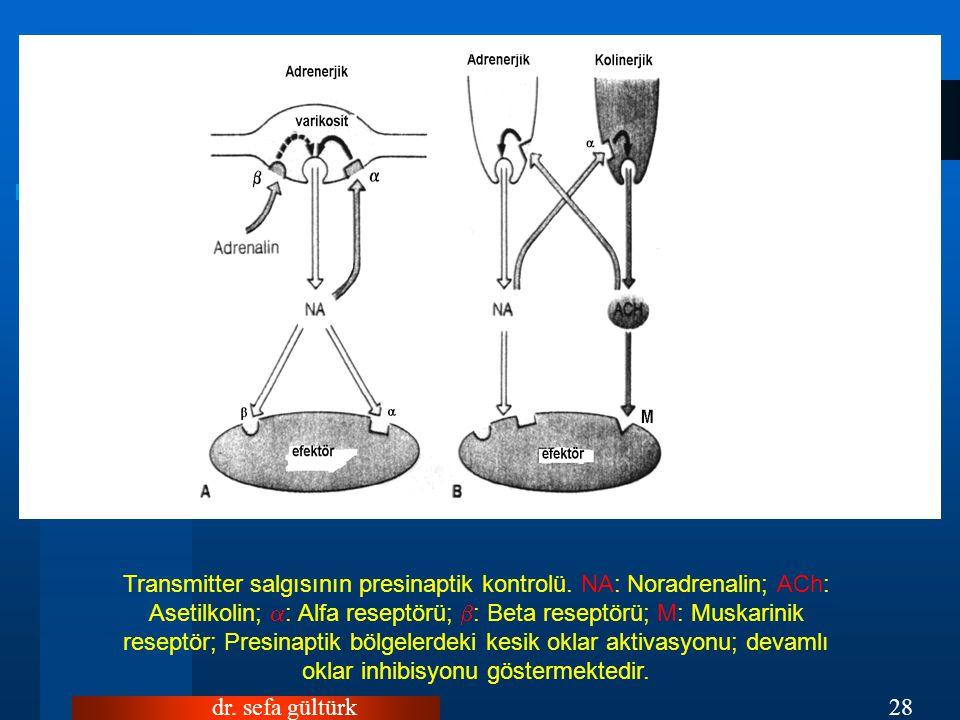 dr.sefa gültürk28 Transmitter salgısının presinaptik kontrolü.