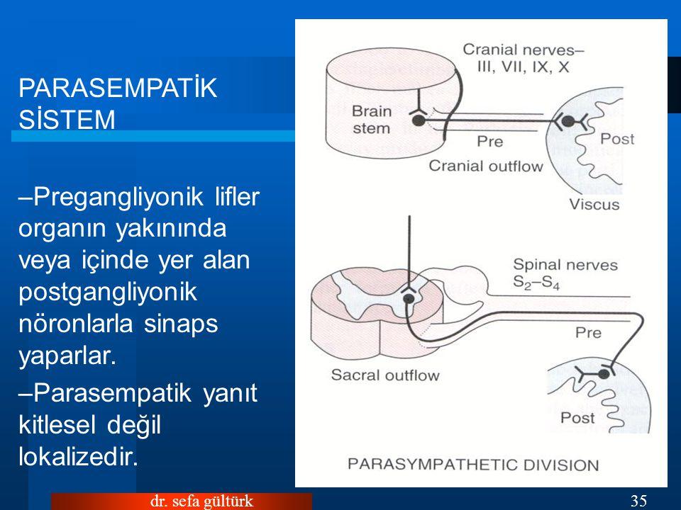 dr. sefa gültürk35 PARASEMPATİK SİSTEM –Pregangliyonik lifler organın yakınında veya içinde yer alan postgangliyonik nöronlarla sinaps yaparlar. –Para