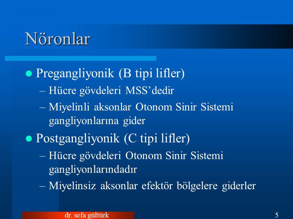 dr. sefa gültürk5 Nöronlar Pregangliyonik (B tipi lifler) –Hücre gövdeleri MSS'dedir –Miyelinli aksonlar Otonom Sinir Sistemi gangliyonlarına gider Po