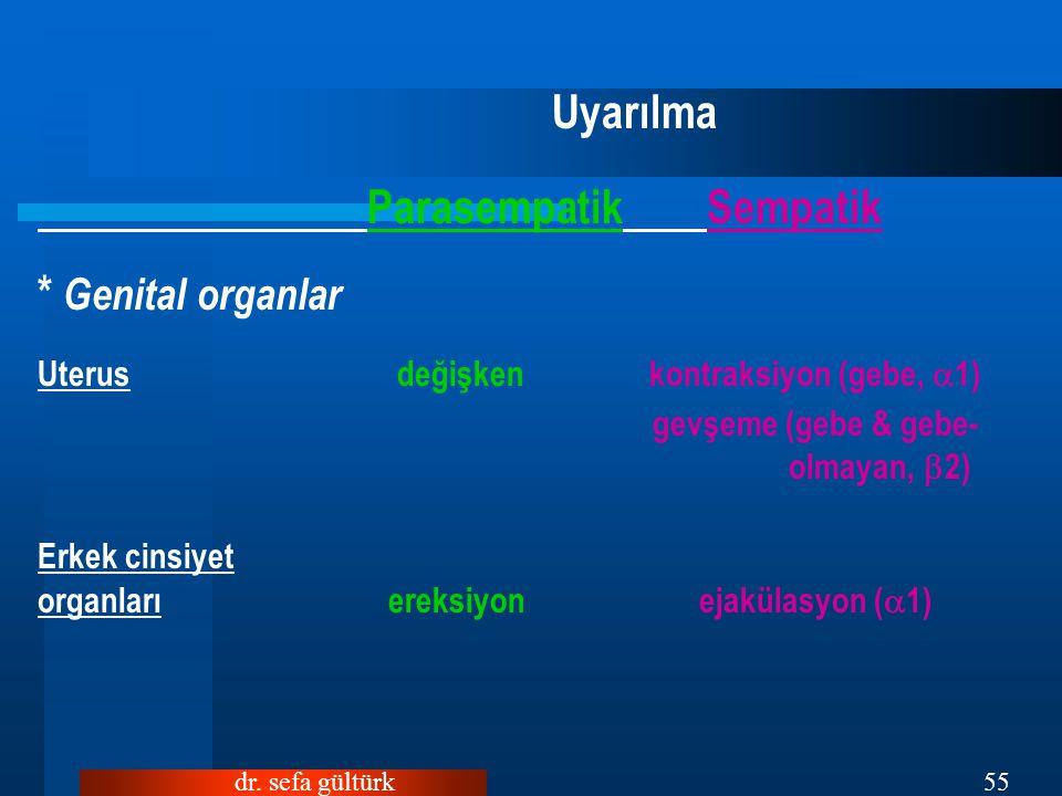 dr. sefa gültürk55 Uyarılma Parasempatik Sempatik * Genital organlar Uterus değişken kontraksiyon (gebe,  1) gevşeme (gebe & gebe- olmayan,  2) Erke