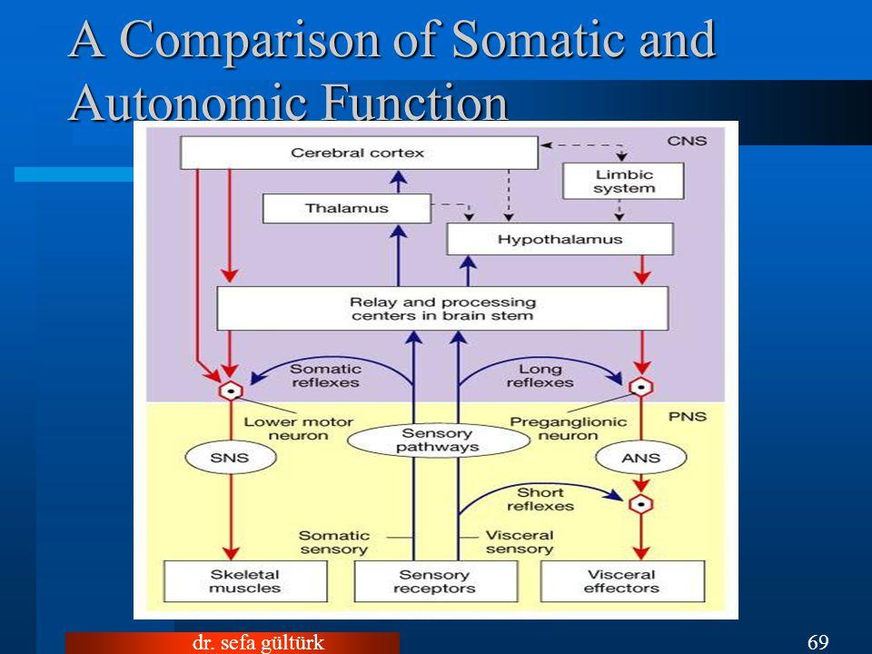 dr. sefa gültürk69 A Comparison of Somatic and Autonomic Function