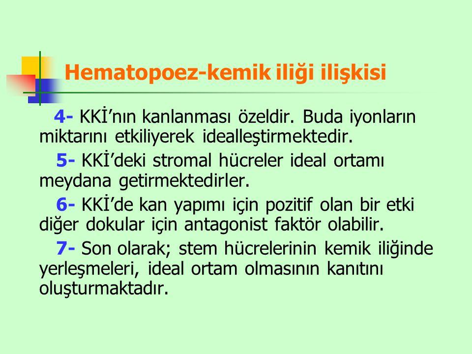 Hematopoez-kemik iliği ilişkisi 4- KKİ'nın kanlanması özeldir.