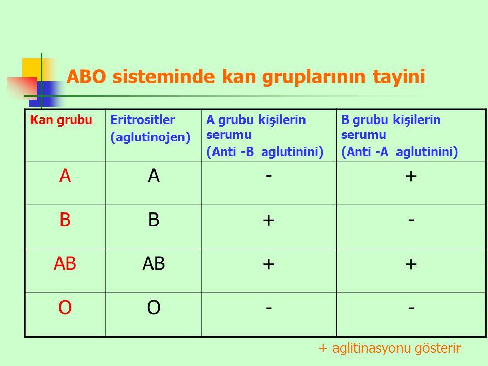 ABO sisteminde kan gruplarının tayini Kan grubuEritrositler (aglutinojen) A grubu kişilerin serumu (Anti -B aglutinini) B grubu kişilerin serumu (Anti