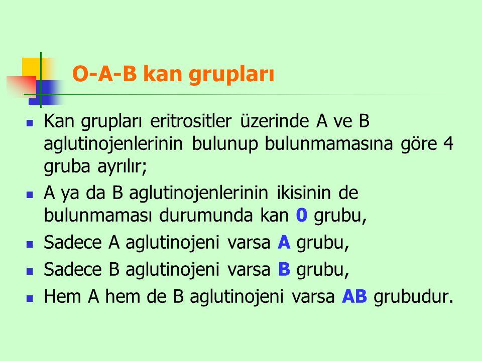 O-A-B kan grupları Kan grupları eritrositler üzerinde A ve B aglutinojenlerinin bulunup bulunmamasına göre 4 gruba ayrılır; A ya da B aglutinojenlerin