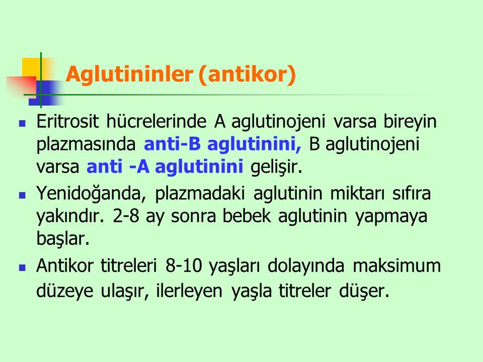 Aglutininler (antikor) Eritrosit hücrelerinde A aglutinojeni varsa bireyin plazmasında anti-B aglutinini, B aglutinojeni varsa anti -A aglutinini geli
