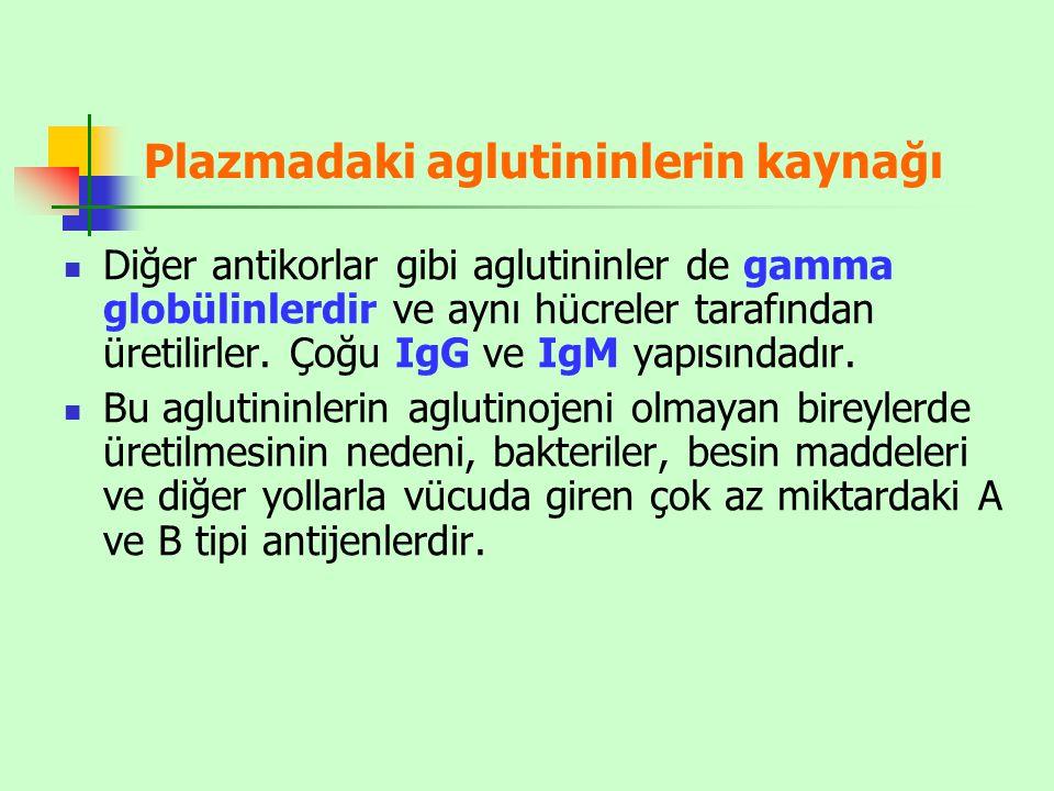 Plazmadaki aglutininlerin kaynağı Diğer antikorlar gibi aglutininler de gamma globülinlerdir ve aynı hücreler tarafından üretilirler. Çoğu IgG ve IgM