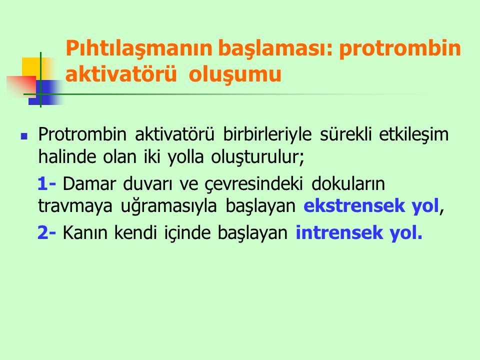 Pıhtılaşmanın başlaması: protrombin aktivatörü oluşumu Protrombin aktivatörü birbirleriyle sürekli etkileşim halinde olan iki yolla oluşturulur; 1- Da