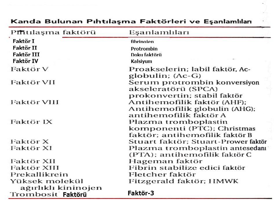 Faktörü Faktör-3 Faktör I fibrinojen Faktör II Protrombin Faktör III Doku faktörü Faktör IV Kalsiyum