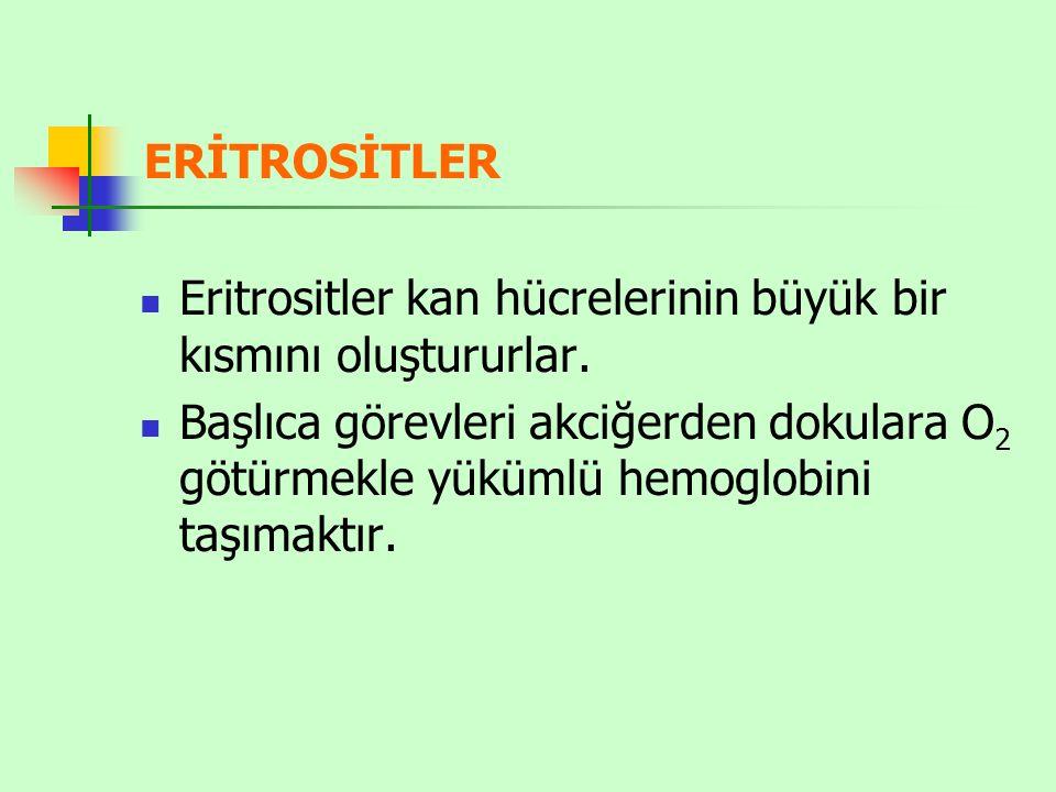 Sarılığın nedeni: 1- Eritrosit yıkımının artmasıyla bilirubinin hızla kana geçmesi (hemolitik ikter) 2- Safra kanallarının tıkanması veya karaciğer hücrelerinin haraplanmasıyla bilirubinin Gl sistemden atılamamasıdır (tıkanma ikteri).
