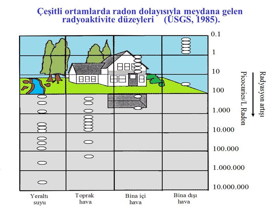 Çeşitli ortamlarda radon dolayısıyla meydana gelen radyoaktivite düzeyleri (USGS, 1985).