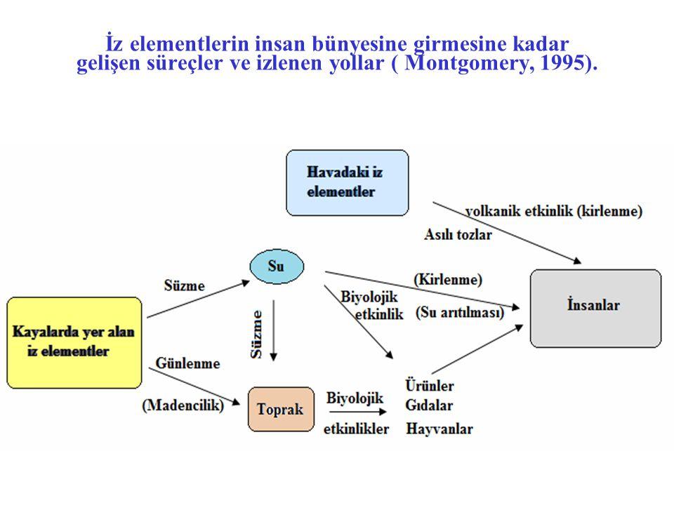 İz elementlerin insan bünyesine girmesine kadar gelişen süreçler ve izlenen yollar ( Montgomery, 1995).