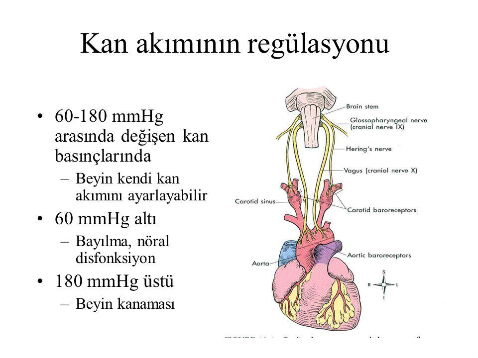 Kan akımının regülasyonu 60-180 mmHg arasında değişen kan basınçlarında –Beyin kendi kan akımını ayarlayabilir 60 mmHg altı –Bayılma, nöral disfonksiyon 180 mmHg üstü –Beyin kanaması