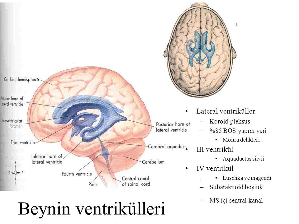Beynin ventrikülleri Lateral ventriküller –Koroid pleksus –%85 BOS yapım yeri Monra delikleri III ventrikül Aquaductus silvii IV ventrikül Luschka ve magendi –Subaraknoid boşluk –MS içi sentral kanal