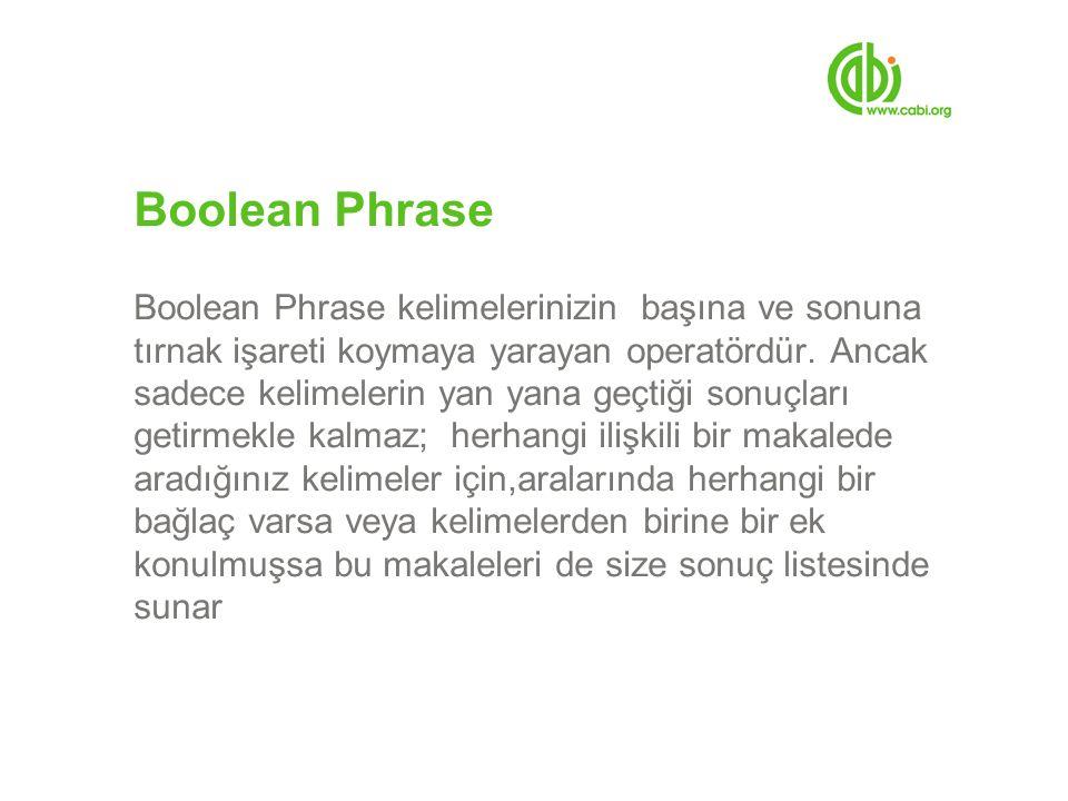 Boolean Phrase Boolean Phrase kelimelerinizin başına ve sonuna tırnak işareti koymaya yarayan operatördür.