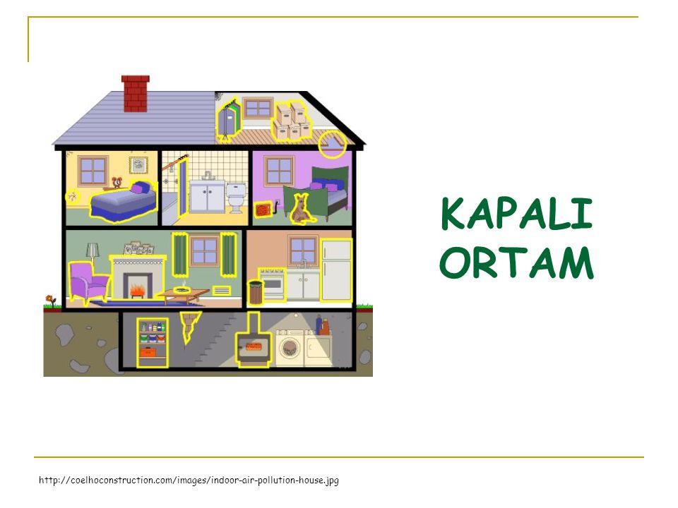 KAPALI ORTAM http://coelhoconstruction.com/images/indoor-air-pollution-house.jpg