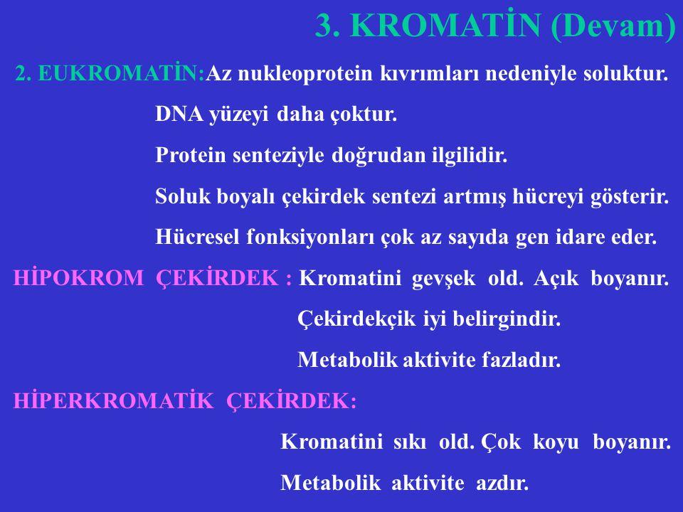 KARYOZOM =NÜKLEOZOM Kromatinin esas yapı birimidir. Dört tip histondan ibarettir. Histonların herbirinin iki kopyası olarak(H2A,H2B,H3 ve H4 ) 166 DNA