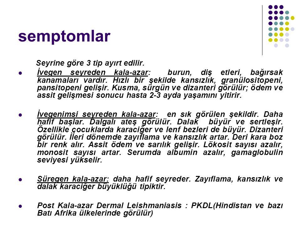 semptomlar Seyrine göre 3 tip ayırt edilir.