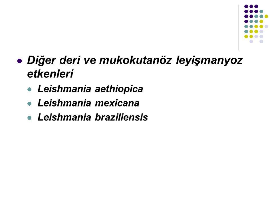 Diğer deri ve mukokutanöz leyişmanyoz etkenleri Leishmania aethiopica Leishmania mexicana Leishmania braziliensis