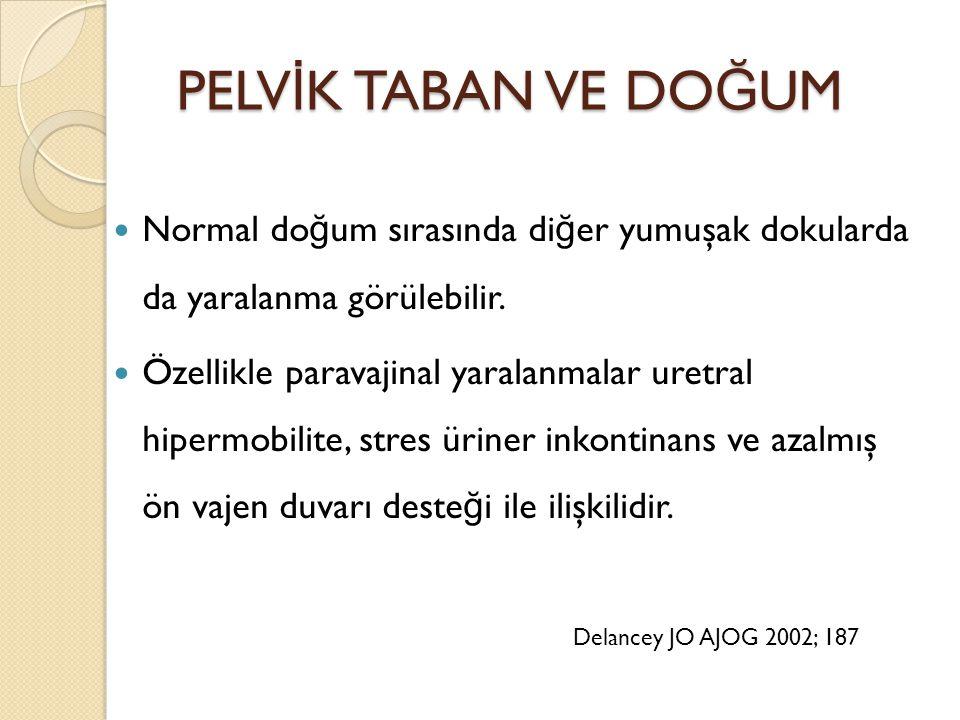 PELV İ K TABAN VE DO Ğ UM PELV İ K TABAN VE DO Ğ UM Normal do ğ um sırasında di ğ er yumuşak dokularda da yaralanma görülebilir. Özellikle paravajinal