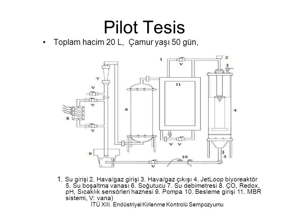 Pilot Tesis Toplam hacim 20 L, Çamur yaşı 50 gün, 1.