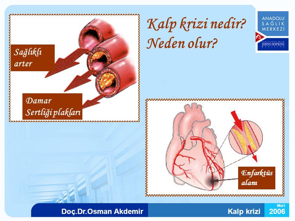 Kalp krizi2006Doç.Dr.Osman Akdemir Mart Sağlıklı arter Damar Sertliği plakları Enfarktüs alanı Kalp krizi nedir? Neden olur?