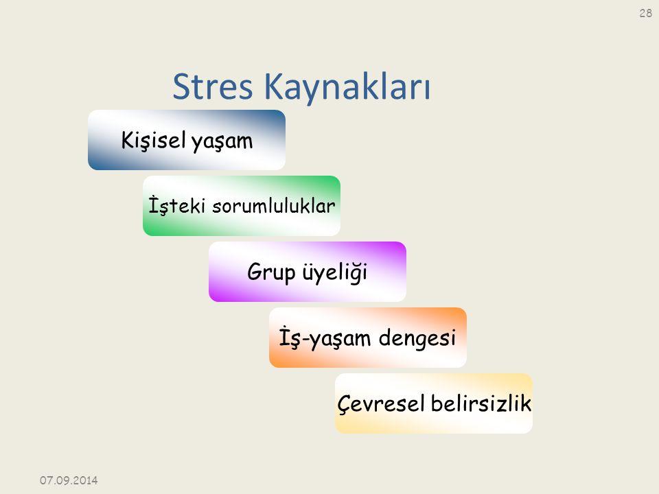 Stres Kaynakları İşteki sorumluluklar Kişisel yaşam Grup üyeliği İş-yaşam dengesi Çevresel belirsizlik 07.09.2014 28