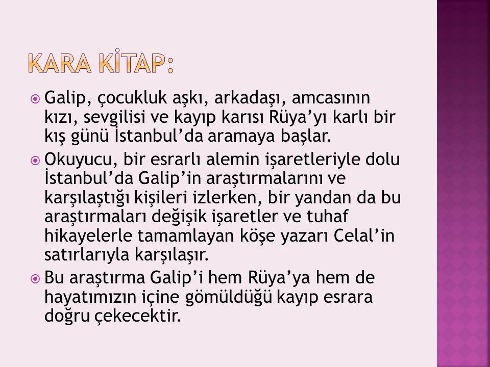  Galip, çocukluk aşkı, arkadaşı, amcasının kızı, sevgilisi ve kayıp karısı Rüya'yı karlı bir kış günü İstanbul'da aramaya başlar.  Okuyucu, bir esra