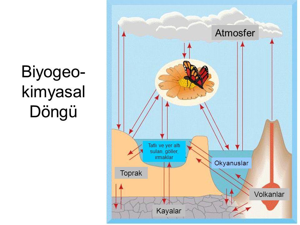 Biyogeo- kimyasal Döngü Atmosfer Toprak Okyanuslar Volkanlar Tatlı ve yer altı suları, göller, ırmaklar Kayalar