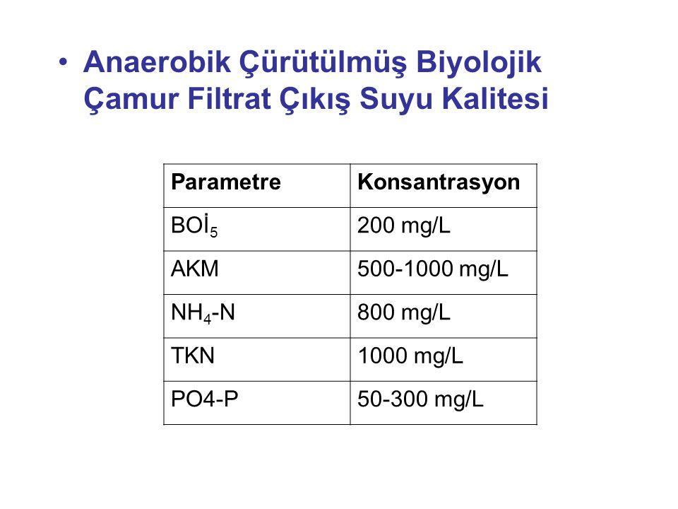 Anaerobik Çürütülmüş Biyolojik Çamur Filtrat Çıkış Suyu Kalitesi ParametreKonsantrasyon BOİ 5 200 mg/L AKM500-1000 mg/L NH 4 -N800 mg/L TKN1000 mg/L P